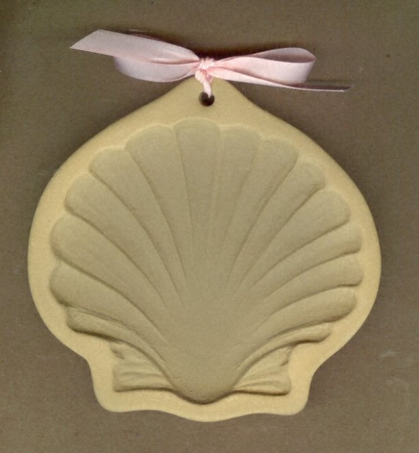 Sea Shell 001.sized